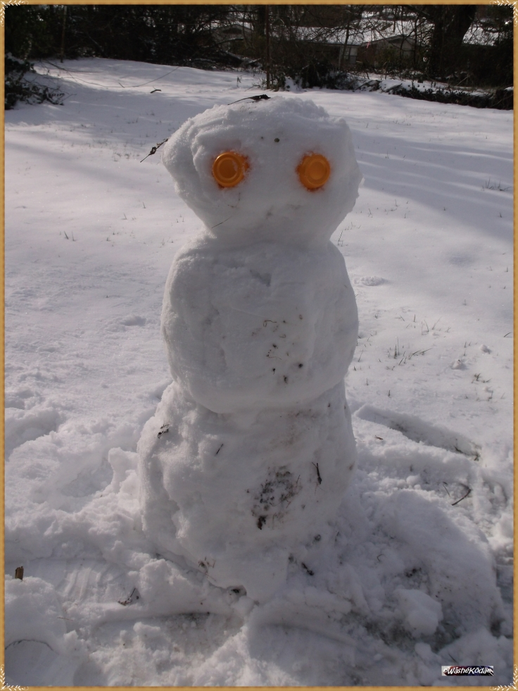snowman2016