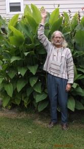 Cana Lilies (40)